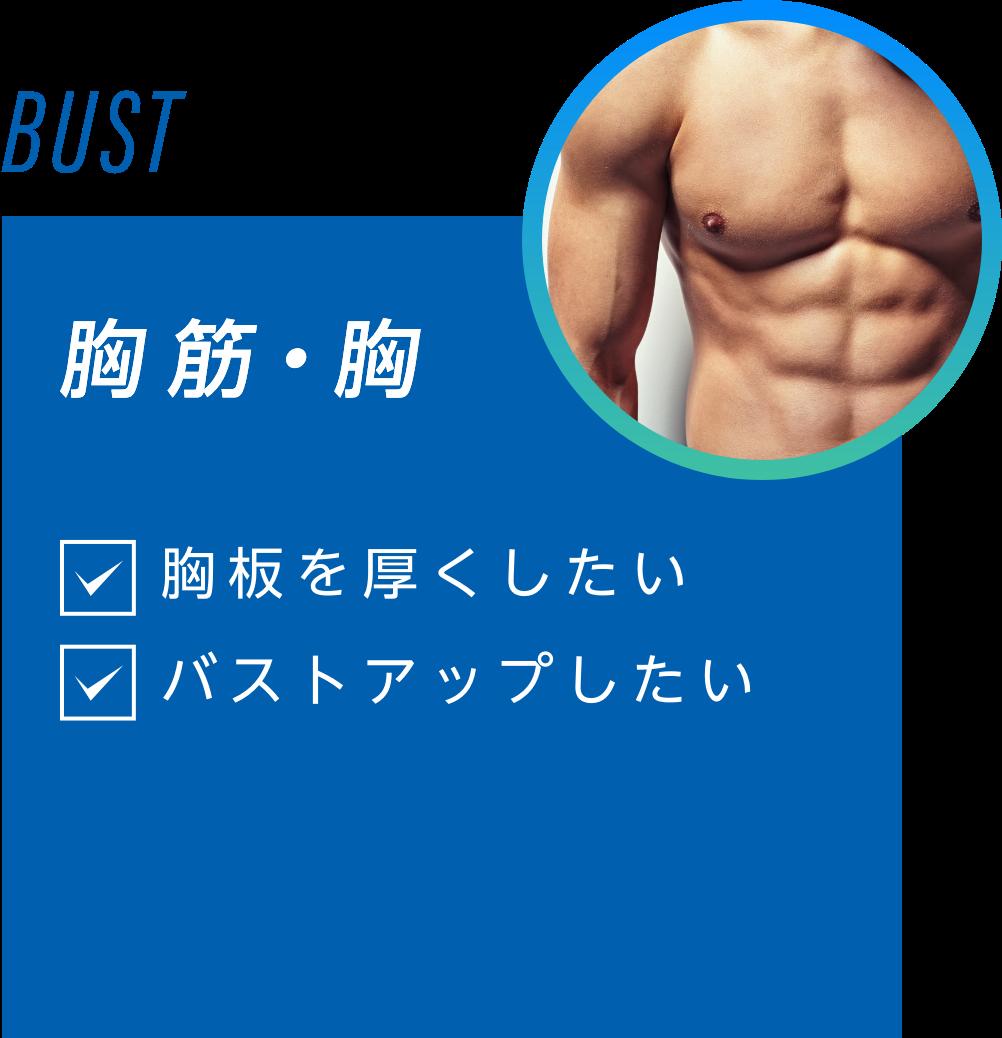腹筋・胸 胸板を厚くしたい バストアップしたい